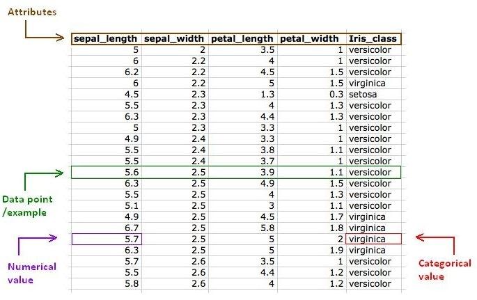 Iris Flower Data Set Github - Flowers Healthy